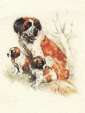SAINT BERNARD DOG AND PUPPIES LOVELY DOG GREETINGS NOTE CARD