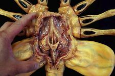 Queen Alien Facehugger 1/1 Life Size  Stop-Motion Armature Prop Xenomorph
