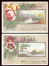 1880's WESTFIELD MA, 2 TRADE CARDS, T J COOLEY PEOPLES CLOTHIER, FREE SHIP TC493