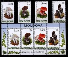 Funghi. blocco di 4w+. 2010 Moldavia