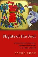 Flights of the Soul: Visions, Heavenly Journeys, and Peak Experiences in the Bib