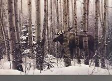 New A Walk in the Woods by Stephen Lyman Fine Wildlife Moose Print Decor 27832