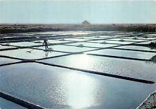 BR14751 La presqu Ile Guerandaise la recolte de sel aux derniers rayons   france