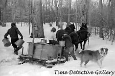 Hauling Vat of Maple Sap for Syrup, N. Bridgewater, VT-1940-Historic Photo Print
