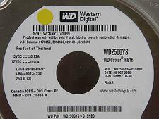 250 gb WD wd2500ys-01shb0/dsbhyt 2cab/oct 2006/2060-701335-005 Rev a