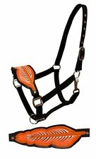 Showman Black Nylon Bronc Style Halter Orange Feather Noseband Horse Tack Equine