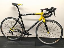 NEW! Giant TCR Carbon Fiber Road Bike, Size L, Shimano Ultegra, Mavic Ksyrium