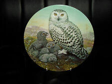 """Snowy Owl And Young"" Plate by Dick Twinney From ""Safe In the Nest Collection"""