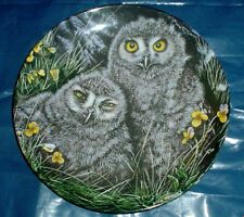 Wedgwood Collectors Plate SNOWY OWL CHICKS - THE BABY OWLS