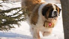 Sleigh Bells Keg Jingle Leather Strap Collar Saint Bernard St Dog Wood Barrel