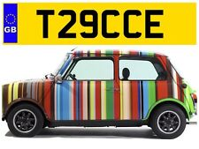 T29 CCE TRACY TRACYS TRACEY TRACEYS TRACE TRACES TRAYS PRIVATE NUMBER PLATE FORD