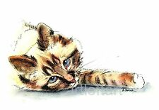 BLUE-EYED BEAUTY Cat  ACEO Card Print by A Borcuk