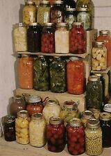 Home Canning  CD ROM Self Sufficiency Recipes Canning Drying Homestead 35 Books