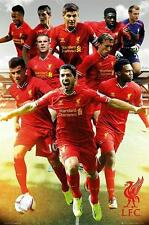 Liverpool Players 2013 - 2014 - Maxi Poster 61cm x 91.5cm (new & sealed)