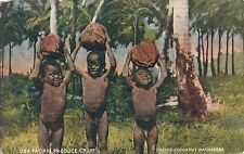 POSTCARD  ADVERTISING   OSA PACIFIC Produce Ltd      Cocoanut  Gathers