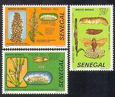 Senegal 1982 molestia Insectos/Plagas/Naturaleza/polillas/orugas 3v Set (n36582)