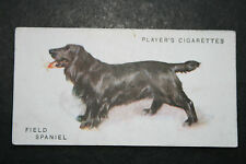 Field Spaniel    Early 1930's Original Vintage Illustrated Card