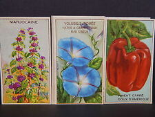 Seed Labels, Vintage French, 18 Labels