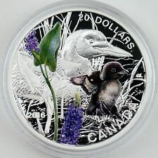 Canadian 2016 $20 Baby Animals: Common Loon 1 oz Pure Silver Color Proof Coin