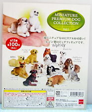 Miniature Premium Dog Collection Vol.1, 12pcs - Beam Gashapon   , h#16