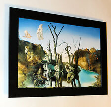 "Salvador Dali ""Swans reflecting elephants"", giclee 8.3X11.7 canvas print, framed"