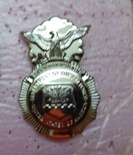 USAF STAFF ID PIN,  SECURITY FORCES SQUADRON, 2.5 INCHES,
