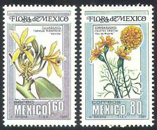 Mexico 1980 Flowers/Plants/Nature/Flora 2v set (n24968)