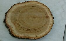 """10 Pc 10"""" to12""""Oak Log oval Slices Wood Disk Rustic Wedding Centerpiece Coaster"""