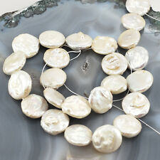 "Large! 16x16mm Natural White Pearl Coin Beads 15"" (PE91)b"