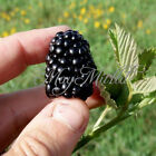 Organic 20 Blackberry Seeds Black Berry Triple Crown Mulberry J