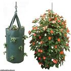 Strong Fabric Hanging Planter Grow Bag Plant Pouch Tomato Strawberry Flower Herb