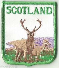 SCOTLAND STAG & DEER WILDLIFE SCENE WORLD EMBROIDERED PATCH BADGE