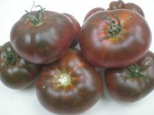 Tomato seeds heirloom  Paul Robeson Qty 25