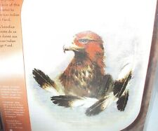 JANLYNN AMERICAN INDIAN GOLDEN FIVE EAGLE COUNTED CROSS STITCH KIT