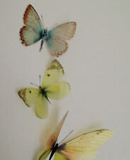 3 Yellow Cream Flying 3D Butterflies Wall Mounted Butterfly Bedroom Mirror Home