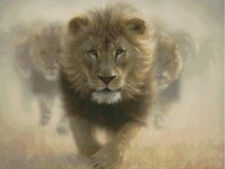 Cross Stitch Kit ~ Candamar Gold Collection Eat My Dust African Lions #52436