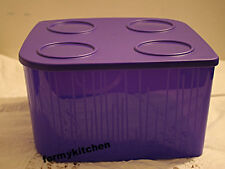 Tupperware Large Fresh N Cool Refrigerator Storage Container 5.2 L/ 22 Cups New