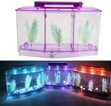 3-Compartment Acrylic Fish Tank Small Aquarium with LED Light Purple