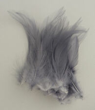 25 Quality Grey Fine Hackle Feathers for Millinery and Crafts