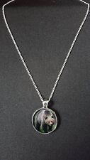 """Ours pendentif sur argent 18"""" plaqué fine chaîne en métal collier cadeau N517"""