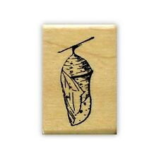 CHRYSALIS bug Mounted rubber stamp,  Monarch caterpillar cocoon, #9