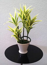 "Lot of 3 Artificial 26"" Song of India Plants in Pots"