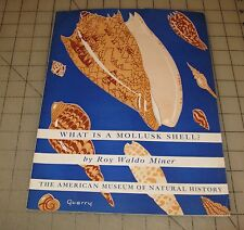 1960s? WHAT IS A MOLLUSK SHELL? American Museum of Natural History Guide #100