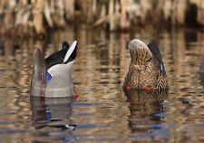 Avery GHG Greenhead Gear Pro Grade Feeder Butt-Up Mallard Pair Decoys Duck Butts