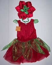 NWT GYMBOREE STRAWBERRY FAIRY COSTUME 5-6 GIRLS HALLOWEEN BERRY TUTU Hat