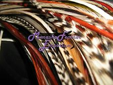 *50LN SALON ACCENT MIX Eurohackle Whiting Grizzly feather hair extensions saddle