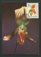 UNGARN MK 1966 ORCHIDEEN ORCHIDEE ORCHIDS MAXIMUMKARTE MAXIMUM CARD MC CM d6356
