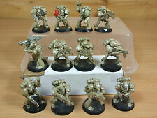 12 in plastica Rogue Trader ERA SPACE MARINE DIPINTI (1454)