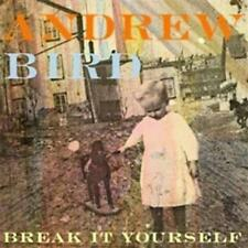 Andrew Bird / Break It Yourself, Digipack, Neu OVP, CD 2012