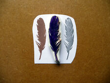 Feather Rubber Stamp, Hand Writing, Hand Carved Pen, Bird Quill